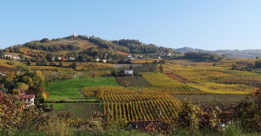 Montecalvo Versiggia