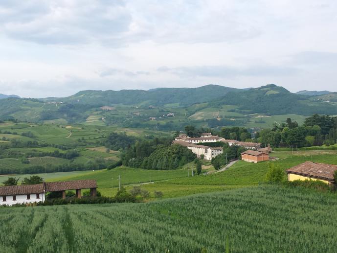 Calvignano
