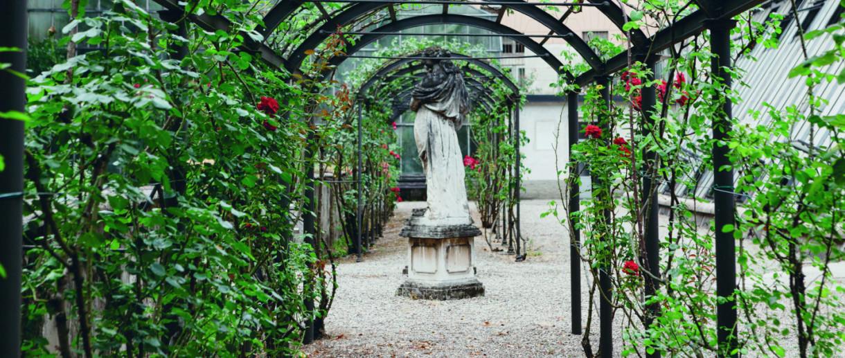 Orto Botanico Università di Pavia, Giardini Pavia