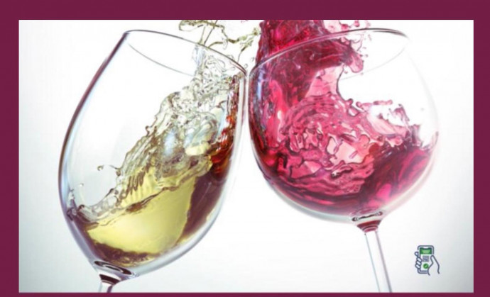 Storie di Vino, l'Oltrepò si racconta a Pavia