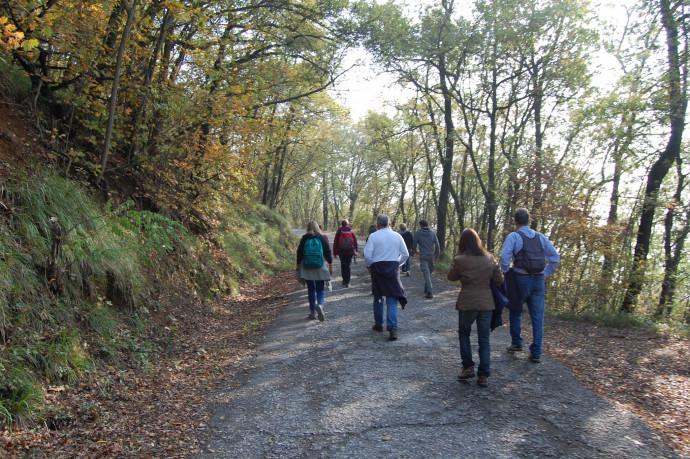 Camminata golosa d'autunno