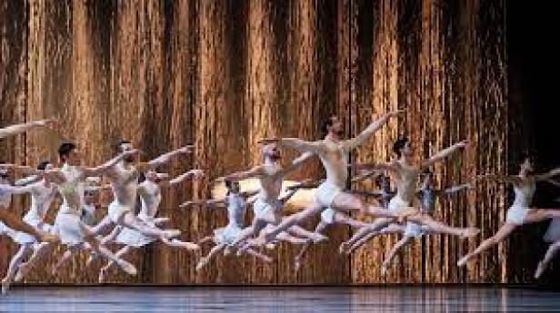 Le Lac des Cygnes - Ballet de l'Opéra National du Rhin