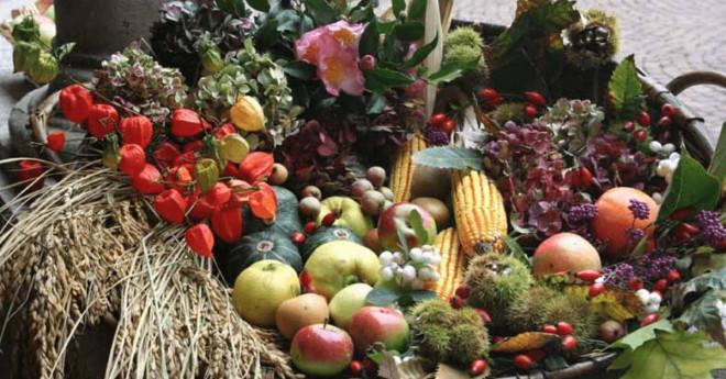 Festa del ringraziamento di San Martino a Voghera