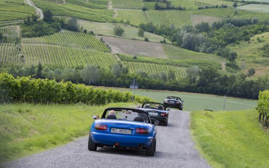 Le Valli del Vino in Oltrepò Pavese