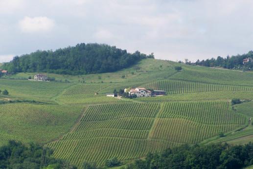 Azienda Agricola Padroggi La Piotta