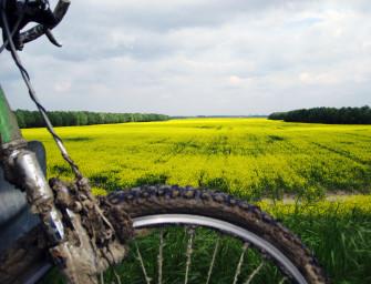 Un PO di Bicicletta