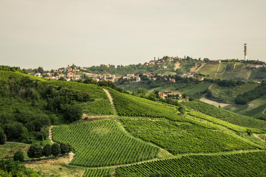 1. Da Pavia a Colombarone (PV)