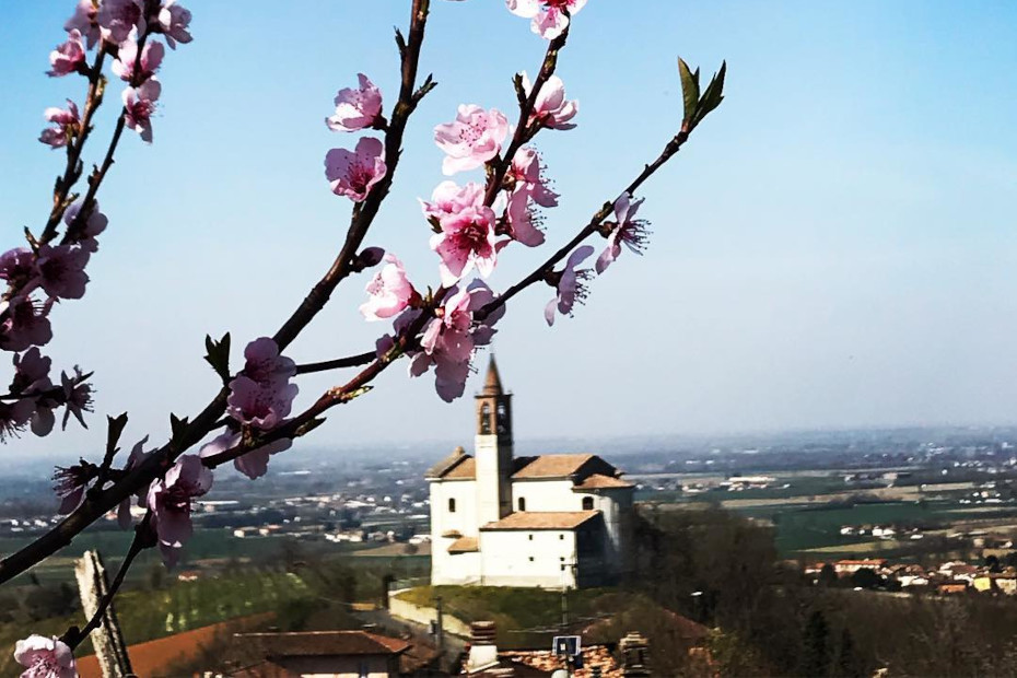 Corvino San Quirico (Pv)